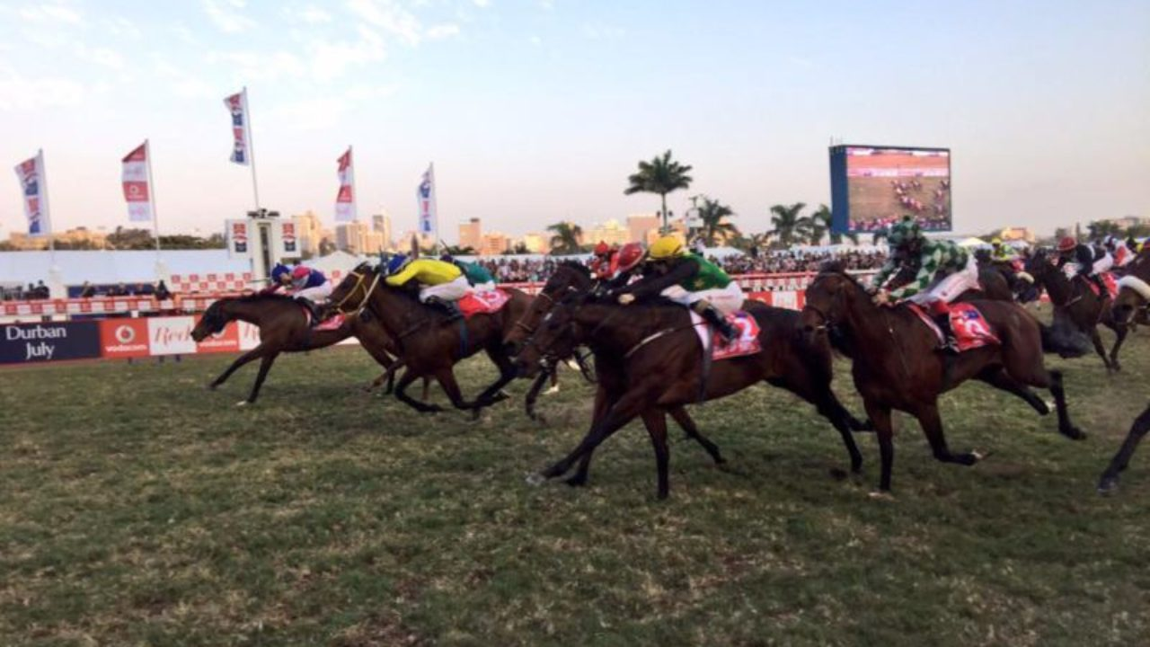 Horse betting in south africa csao in betting