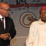 Africa's vulnerable go unseen: Zuma