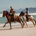 South Africa's Gansbaai lands gold tourism award