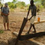 Southern African states work to save forests