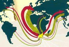 South Africa's global 'brain bank'