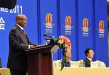 Zuma cautions against protectionism