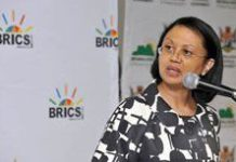 Food security 'high on BRICS agenda'