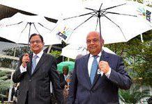 BRICS group to promote green economy