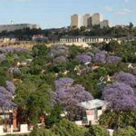 City of Joburg by-law promotes greening