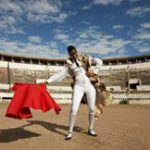 Nandipha Mntambo: art beneath the hide