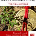 Helping Africa build Chinese expertise