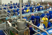 South Africa launches new industrial policy