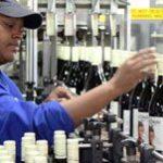 Gugulethu winemaker toasts success