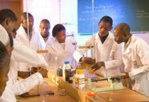 SA scientists win AU awards