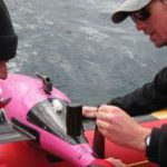 SA ocean gliders tackle climate change