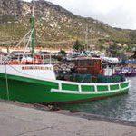 SA consumers help rebuild fish stocks