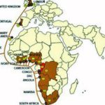 West Africa cable 'online by 2011'