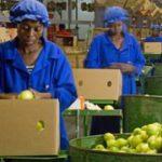 Unemployment insurance expands