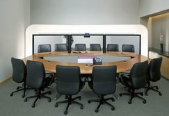 TelePresence: meetings without travel