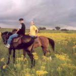 Horseback safaris in South Africa
