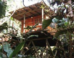Backpacker lodges: KwaZulu-Natal