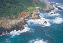 Taking South Africa's Garden Route