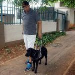Meeting South Africa's guide dogs