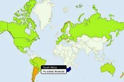 Google tool tracks the flu in SA