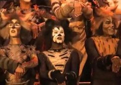 Video: Spectacular 'Cats' returns
