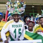 Bafana fans: colour and passion