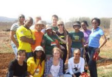 Over a million South Africans volunteer