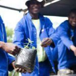 South Africa's 'green accord' for jobs