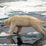 2011 the 10th warmest year: report