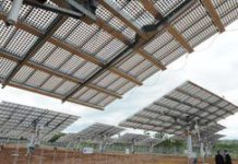 Green economy 'must also create jobs'