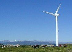 Green light for SA's wind farm