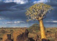 SA's eighth World Heritage Site