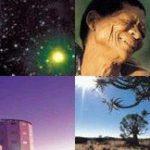 The Karoo Array Telescope