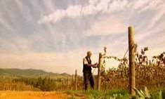 SA to launch Braille wine bottle