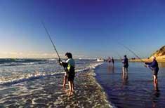 'FishMS' service a hit in SA
