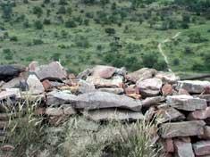 Blown away by Mapungubwe