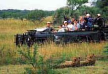 Overland tours & guided safaris