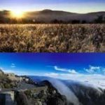 SA's national parks to go 'green'