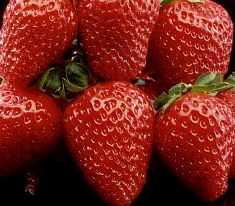 SA berries make their mark