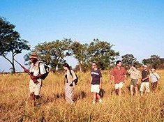 Limpopo goes the Ivory Route