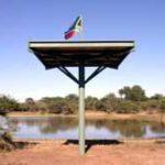 Up a pole in Kruger Park