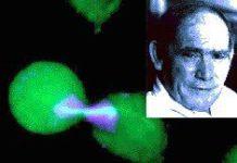 SA-born scientist wins Nobel Prize