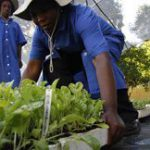 SA women entrepreneurs hit Chicago