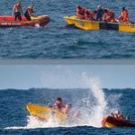 Whale rescued during South African Billabong Pro
