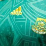 Confederations Cup: Bafana Bafana