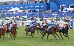 South Africa's biggest horse race a huge drawcard