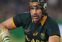 Springbok cap record for Victor Matfield