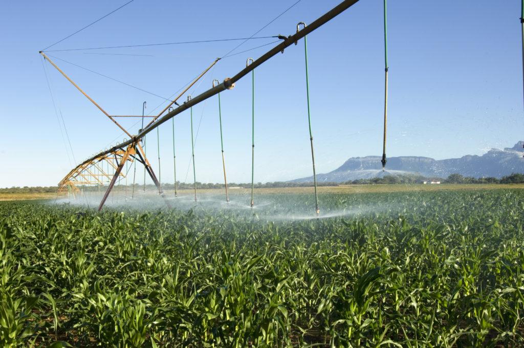 Northern Cape province: Centre-pivot irrigation