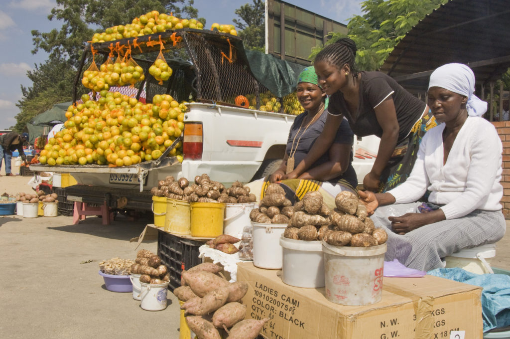 Hoedspruit, Limpopo province: Hawkers at an informal market on the roadside