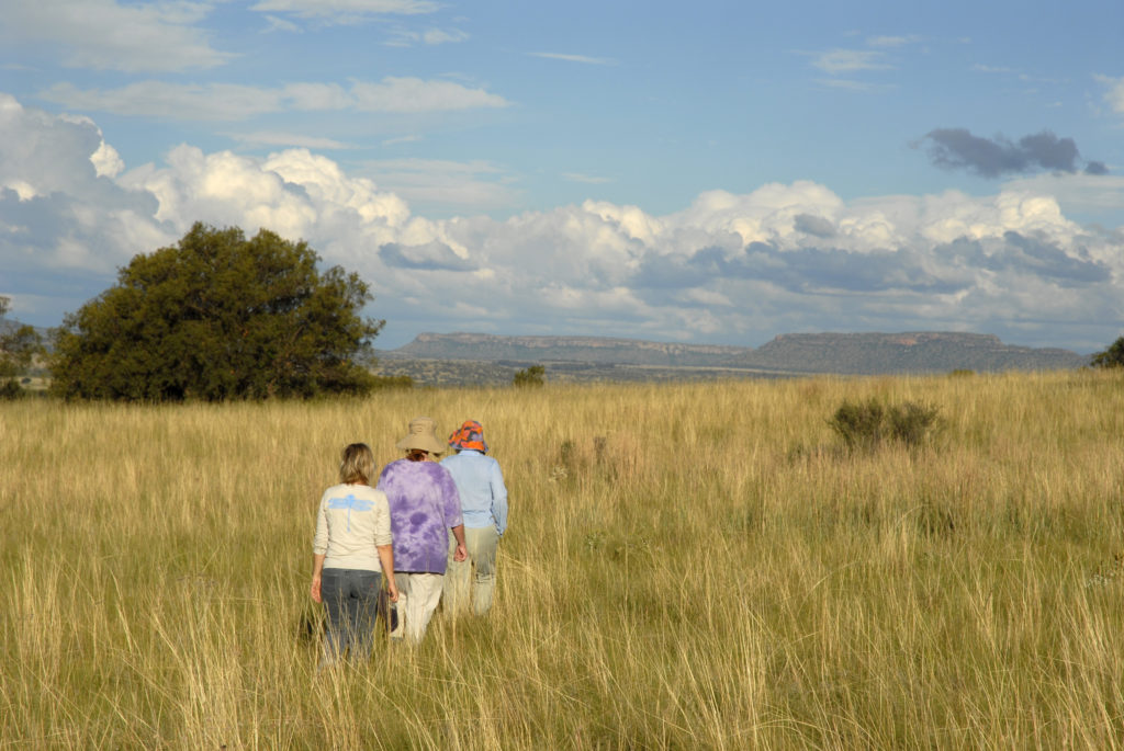 South Africa, Free State: Walking in the Koranna Mountains